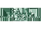 Ball official standard watches